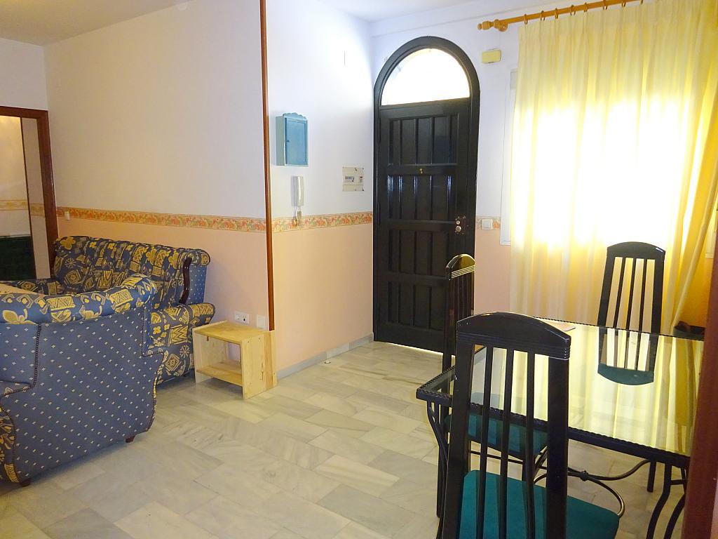 Comedor - Piso en alquiler en calle San Bernardo, San Bernardo en Sevilla - 206667328
