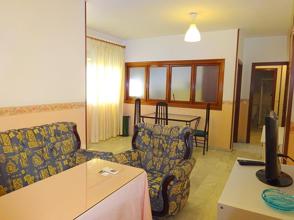 Comedor - Piso en alquiler en calle San Bernardo, San Bernardo en Sevilla - 206667335