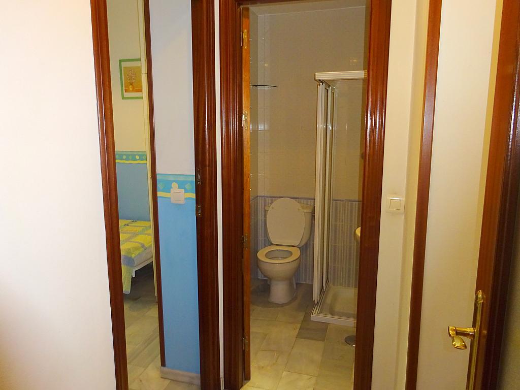 Pasillo - Piso en alquiler en calle San Bernardo, San Bernardo en Sevilla - 206667604