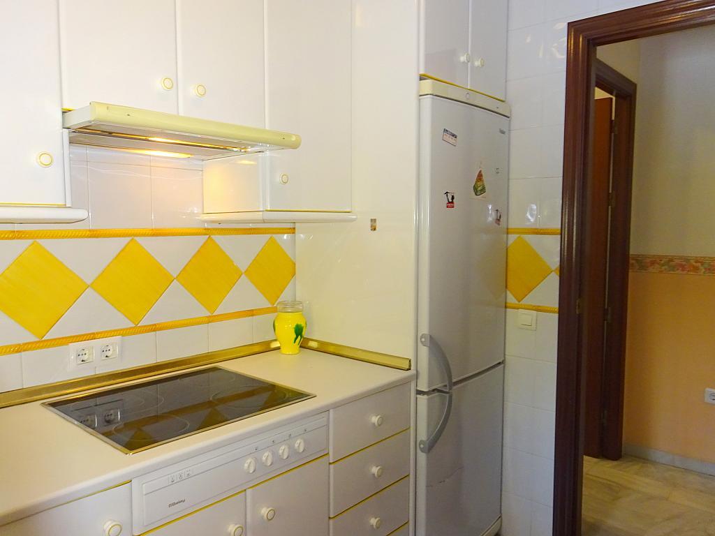 Cocina - Piso en alquiler en calle San Bernardo, San Bernardo en Sevilla - 206667613