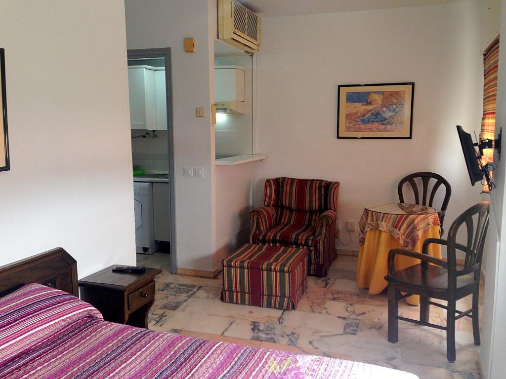Salón - Estudio en alquiler en calle Alcalde Luis Uruñuela, Av. Ciencias-Emilio Lemos en Sevilla - 206862041