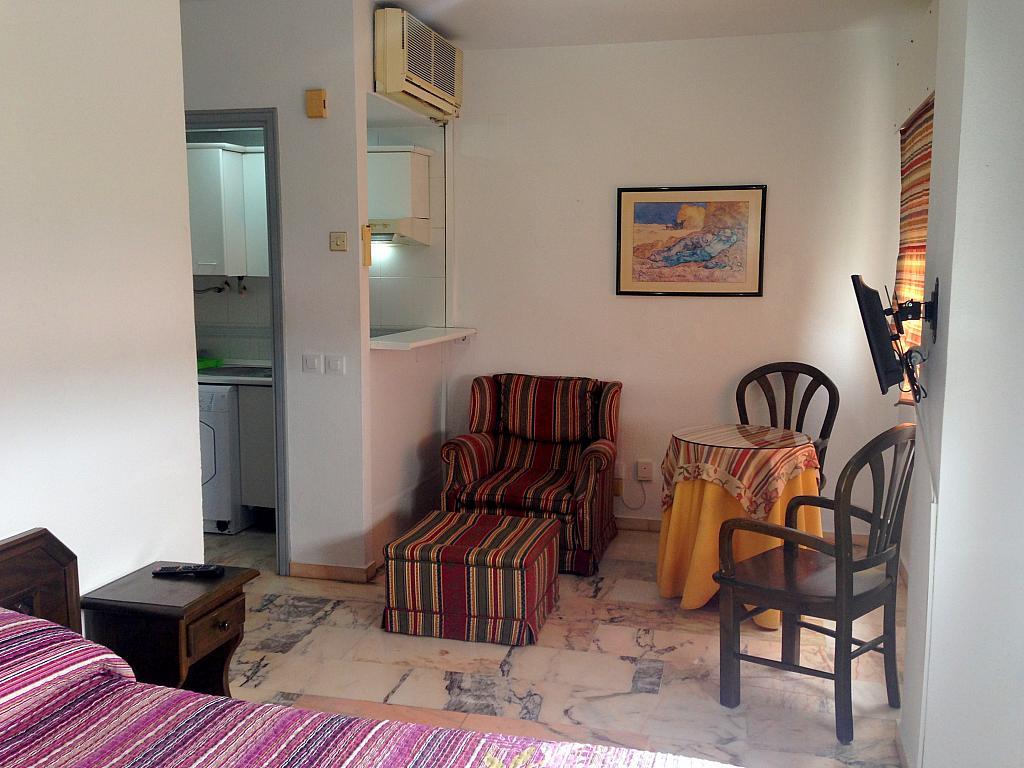 Comedor - Estudio en alquiler en calle Alcalde Luis Uruñuela, Av. Ciencias-Emilio Lemos en Sevilla - 206862129