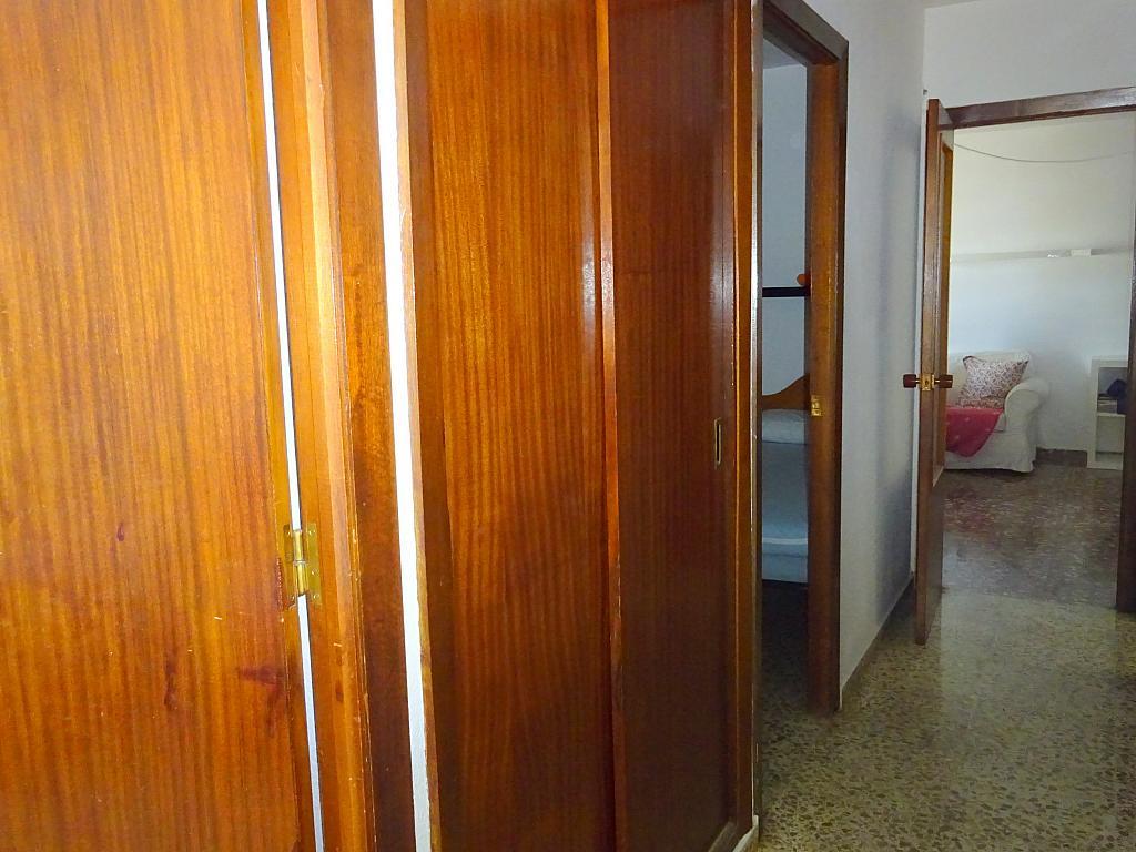 Pasillo - Piso en alquiler en calle Claudio Guerín, Nervión en Sevilla - 206904696