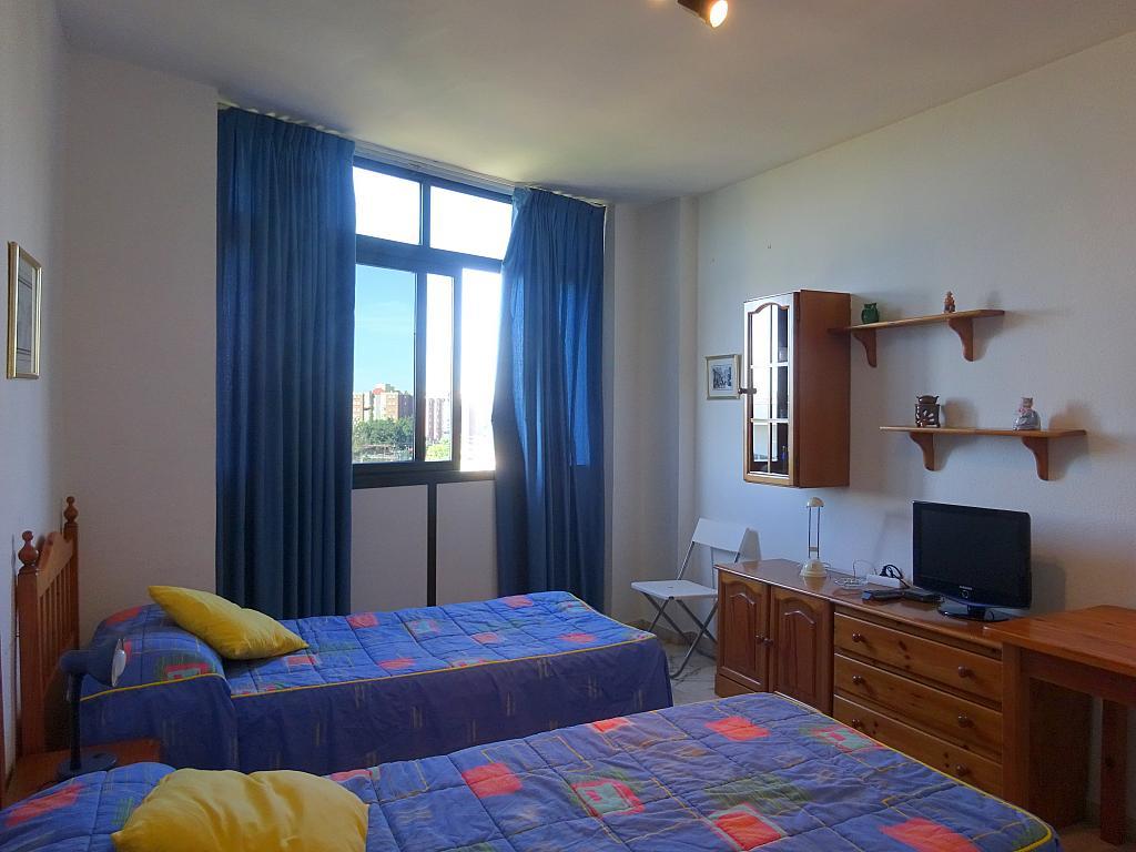 Salón - Estudio en alquiler en calle Alcalde Luis Uruñuela, Entrepuentes en Sevilla - 212389470