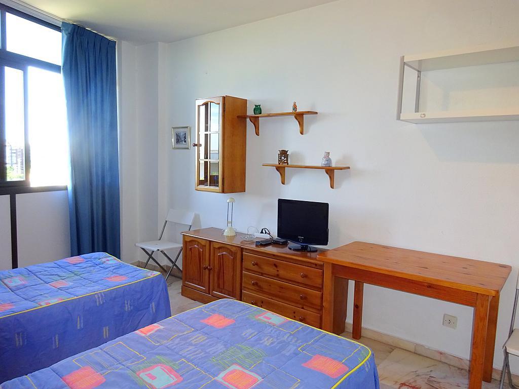 Salón - Estudio en alquiler en calle Alcalde Luis Uruñuela, Entrepuentes en Sevilla - 212389508