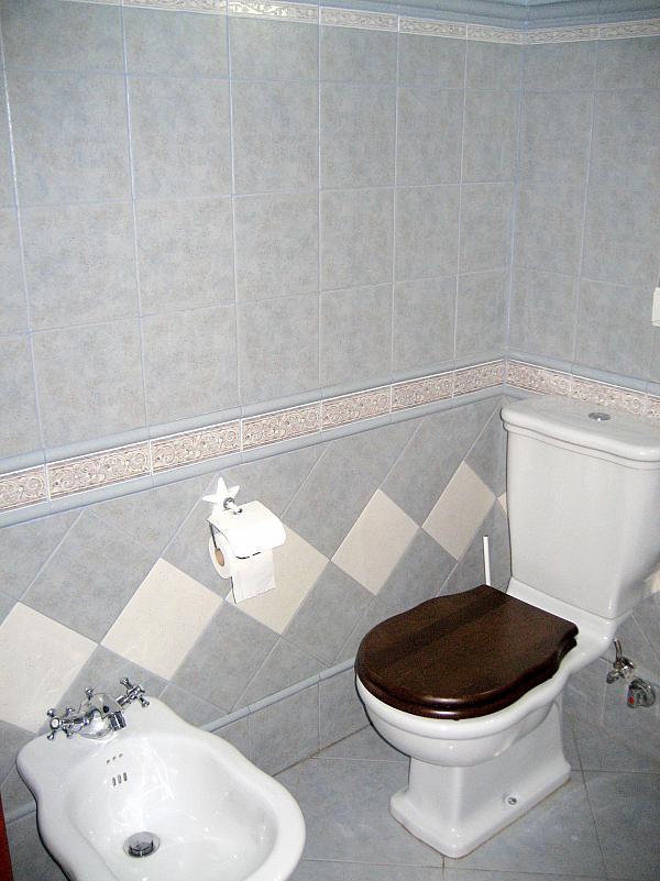 Baño - Piso en alquiler en calle Alcalde Luis Urñuela, Entrepuentes en Sevilla - 213608012