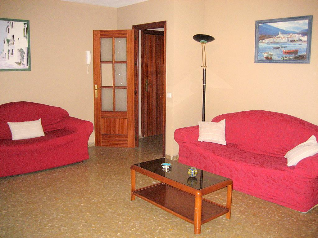 Salón - Piso en alquiler en calle Alcalde Luis Urñuela, Entrepuentes en Sevilla - 213608332