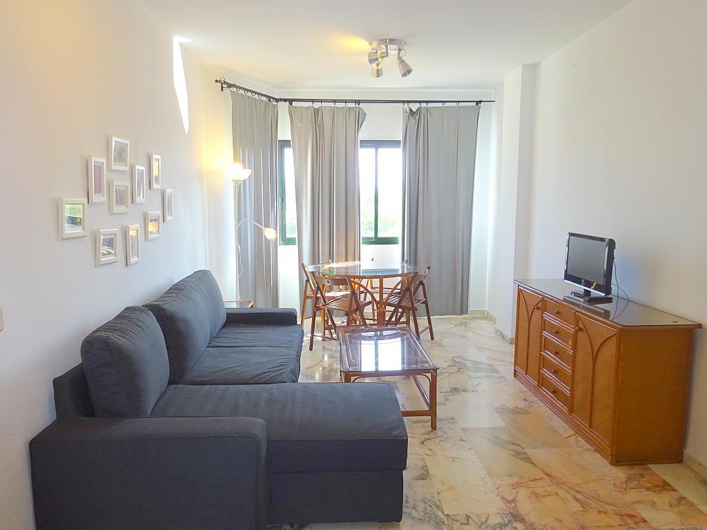 Salón - Apartamento en alquiler en calle Alcalde Luis Uruñuela, Entrepuentes en Sevilla - 218217697