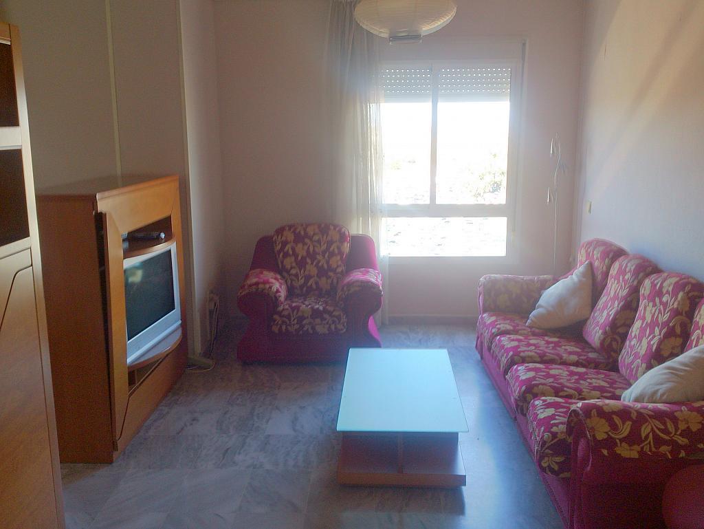 Salón - Piso en alquiler en calle Campos Eliseos, Entrepuentes en Sevilla - 223855154