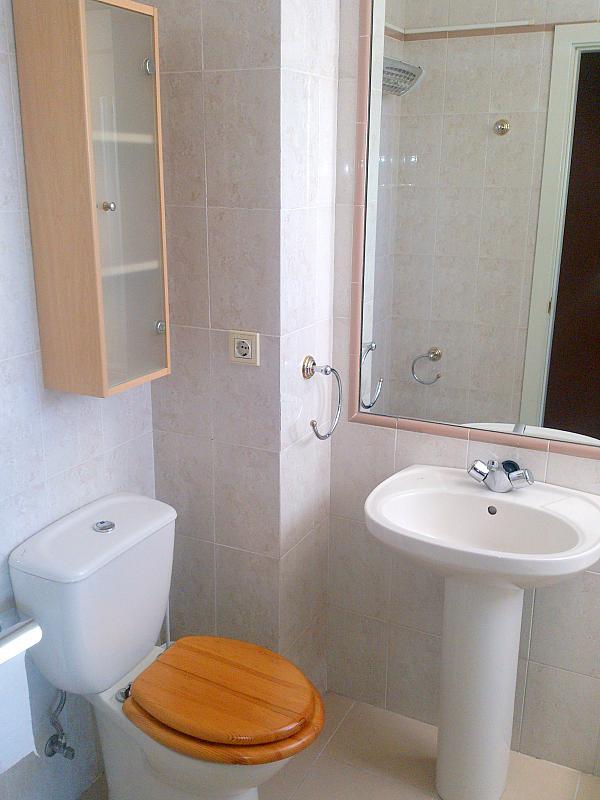 Baño - Piso en alquiler en calle Campos Eliseos, Entrepuentes en Sevilla - 223855206