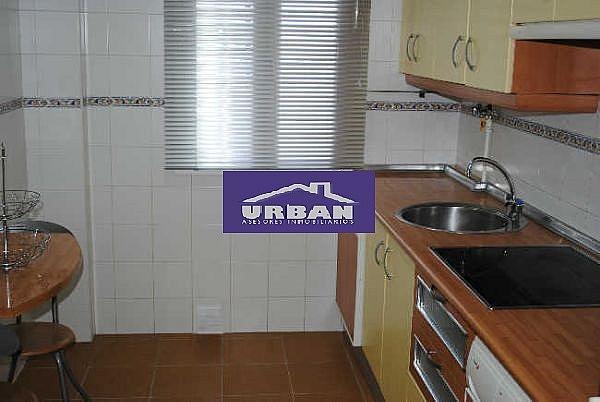 Cocina - Piso en alquiler en calle De Las Ciencias, Av. Ciencias-Emilio Lemos en Sevilla - 231212951
