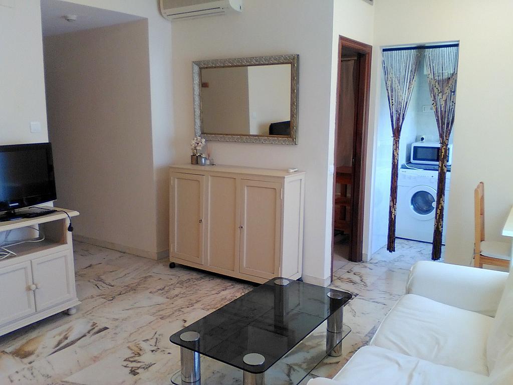 Salón - Estudio en alquiler en calle Alcalde Luis Uruñuela, Entrepuentes en Sevilla - 243314273