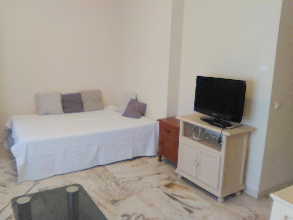 Salón - Estudio en alquiler en calle Alcalde Luis Uruñuela, Entrepuentes en Sevilla - 243314287