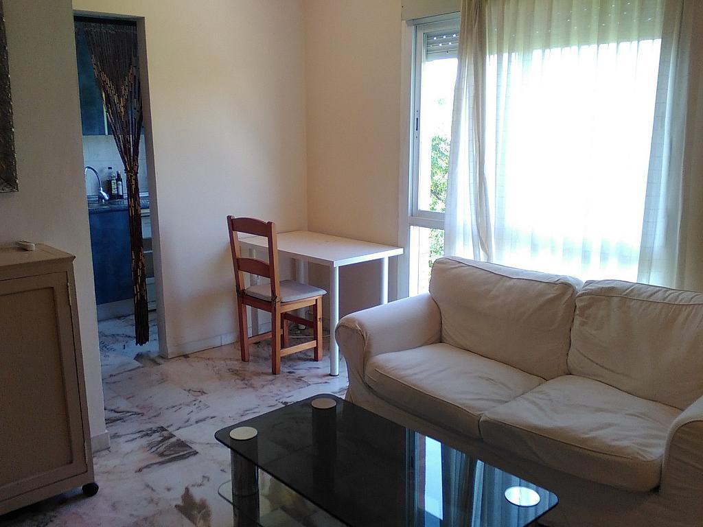 Salón - Estudio en alquiler en calle Alcalde Luis Uruñuela, Entrepuentes en Sevilla - 243314289