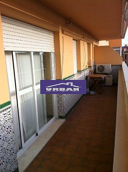 Terraza - Piso en alquiler en calle Alcalde Luis Uruñuela, Entrepuentes en Sevilla - 243320094
