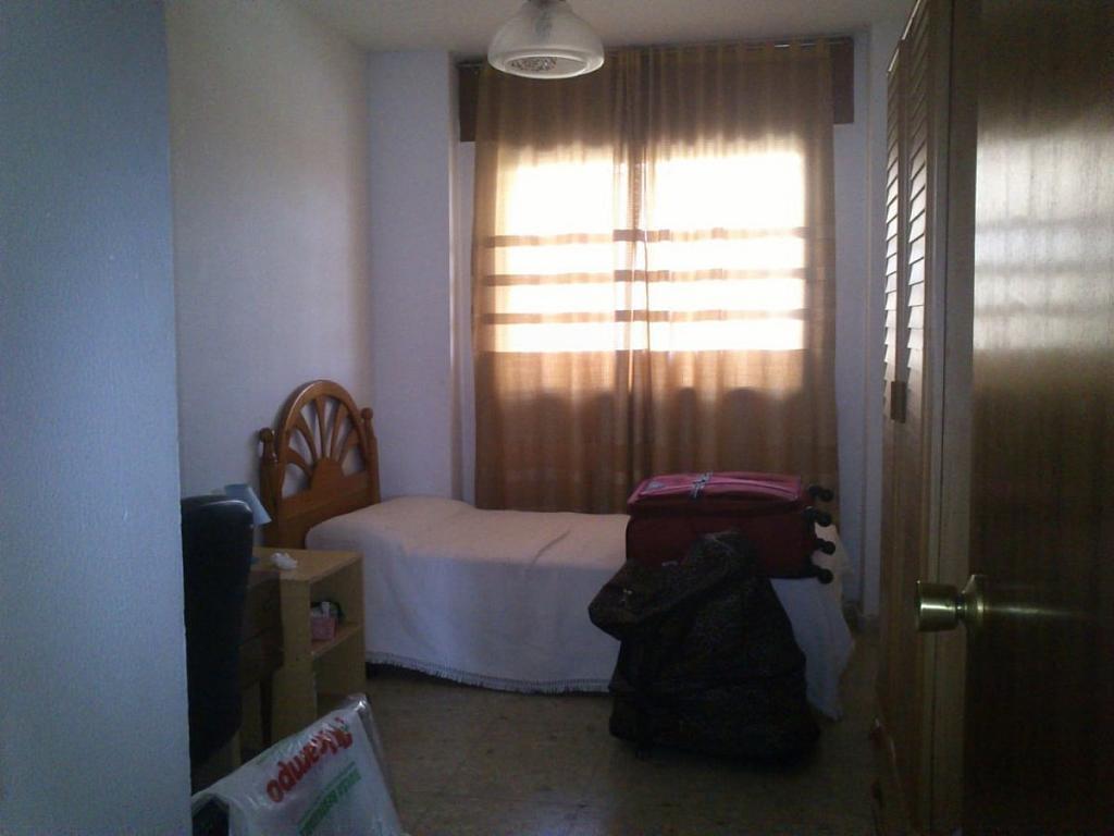 Foto - Piso en alquiler en calle Bami Pineda, Bami en Sevilla - 304410761