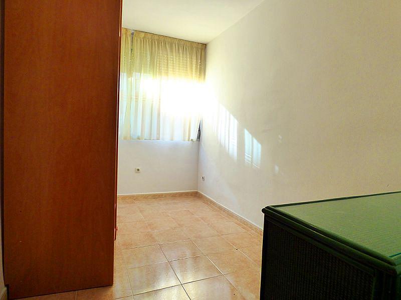 Foto - Piso en alquiler en calle Arroyo Santa Justa, Macarena en Sevilla - 331079068