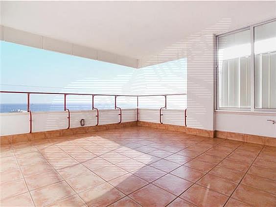 Piso en alquiler en Foners en Palma de Mallorca - 300093233
