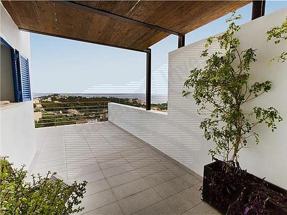 Chalet en alquiler en Génova en Palma de Mallorca - 321135814