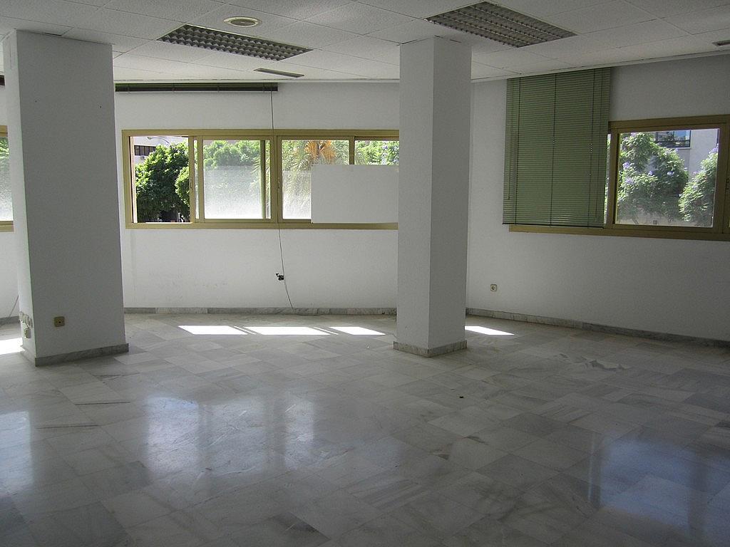 Despacho - Oficina en alquiler en calle Hilera, Centro en Málaga - 211607583
