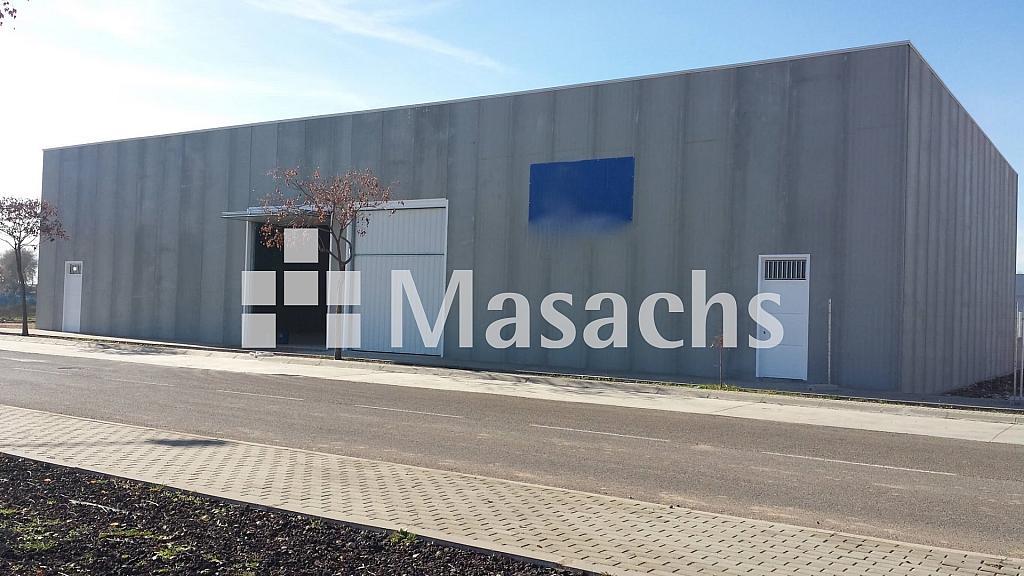 Ref. 7513 PUERTA - Nave industrial en alquiler en Ciudad Real - 263777694