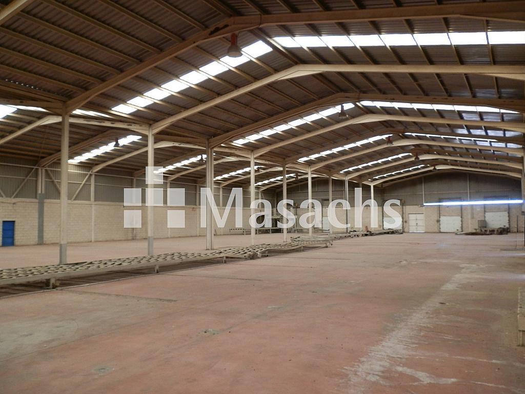 Ref. 7507 nave 5 - Nave industrial en alquiler en Manzanares - 263777841