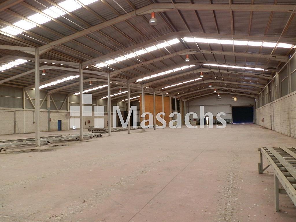 Ref. 7507 nave 3 - Nave industrial en alquiler en Manzanares - 263777844