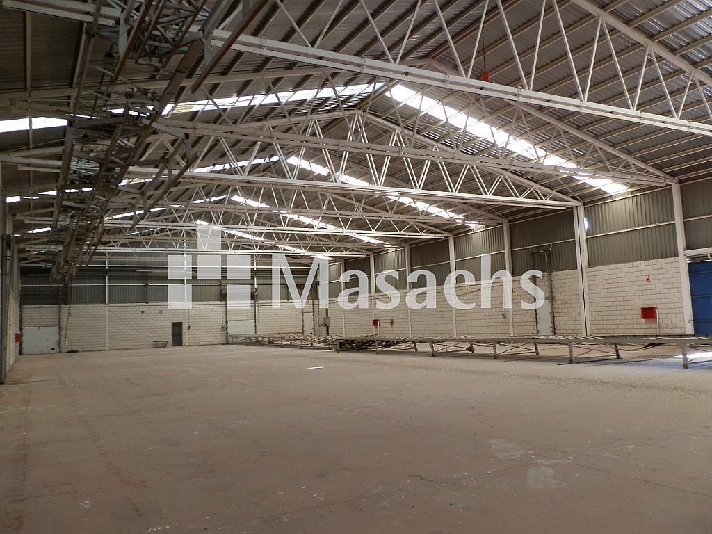 Ref. 7507 nave 4 - Nave industrial en alquiler en Manzanares - 263777847