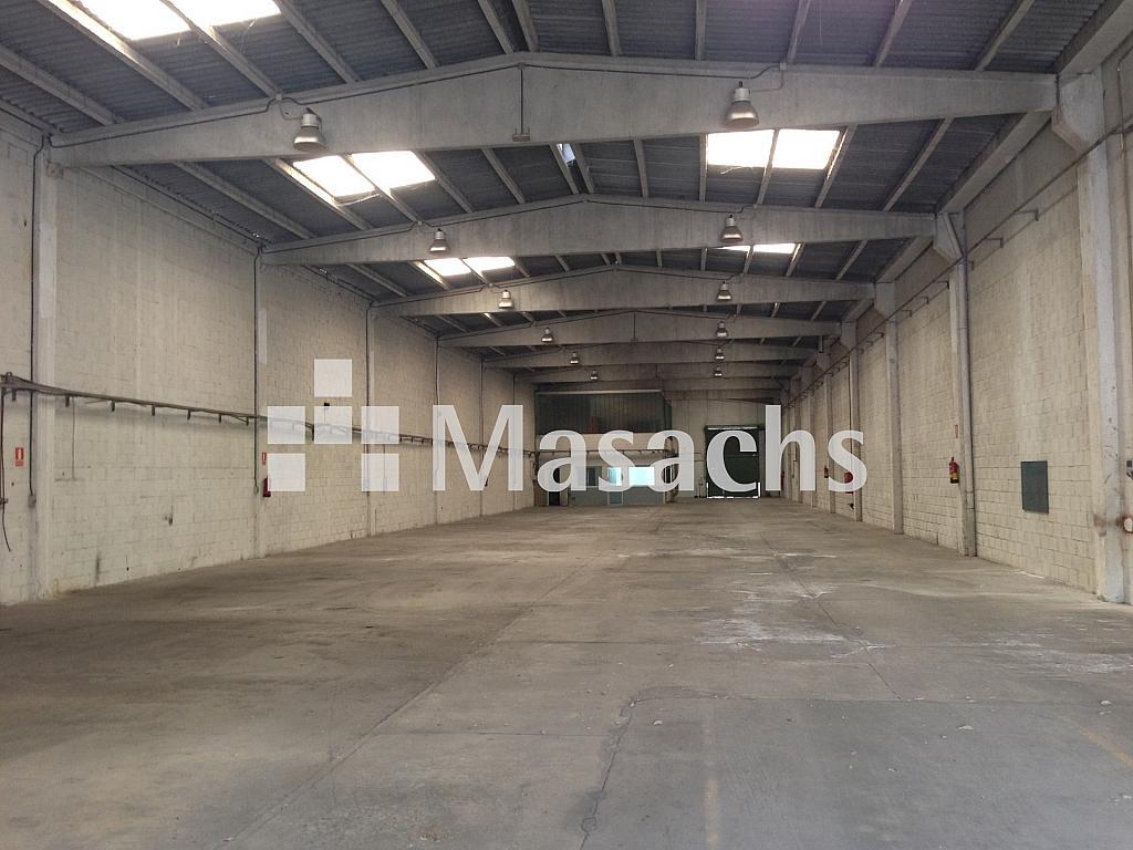 IMG_8581 - Nave industrial en alquiler en Sabadell - 297038320