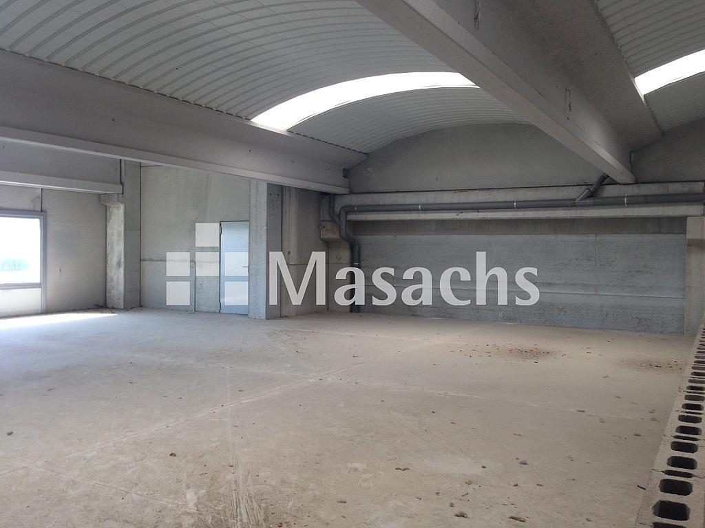 IMG_9186 - Nave industrial en alquiler en Terrassa - 317864439