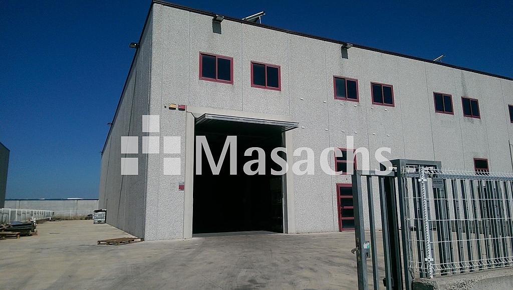 Ref. 7238 ALFRED - Nave industrial en alquiler en Roca del Vallès, la - 203878312
