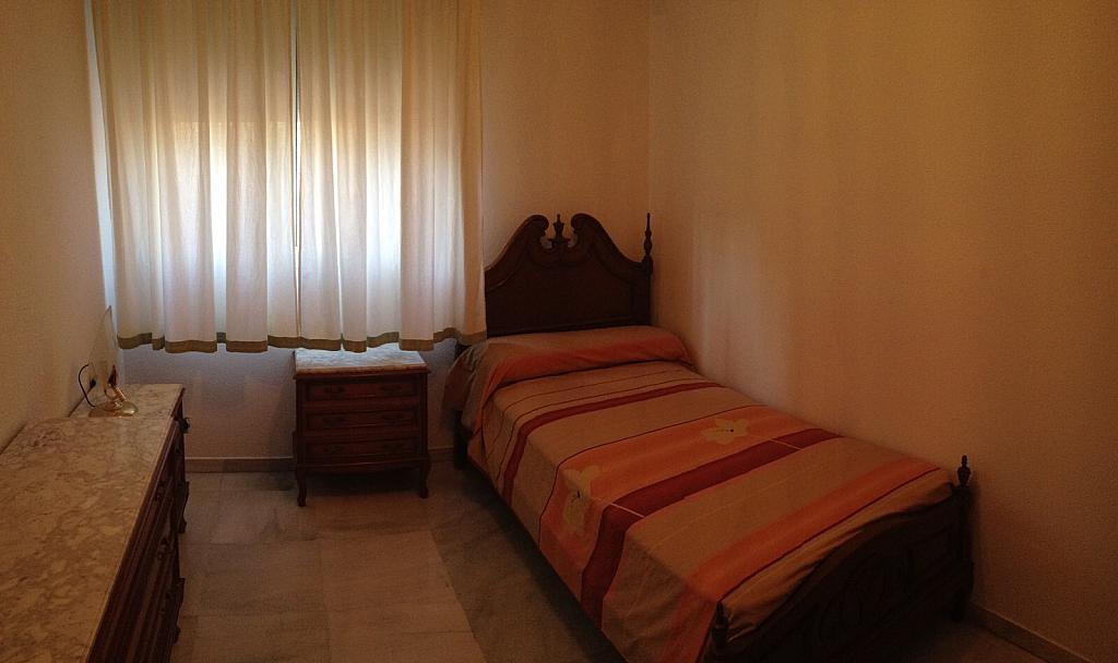 Piso en alquiler en plaza Del Titán, Zona Centro en Huelva - 235831545
