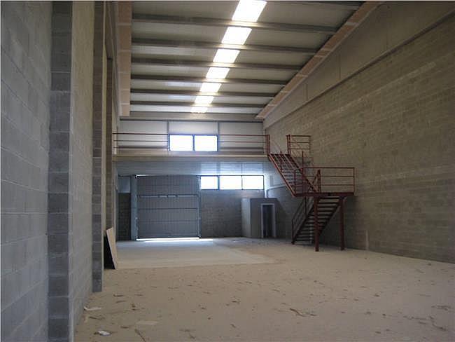 Nave industrial en alquiler en Rodonyà - 321758570