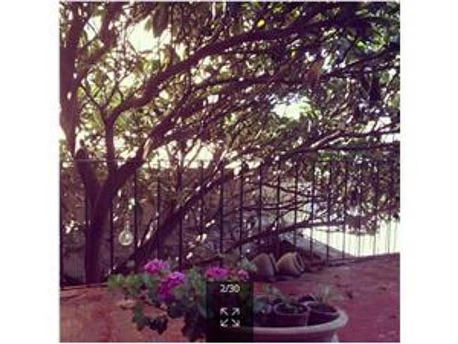 Casa en alquiler en Segura - 321758888