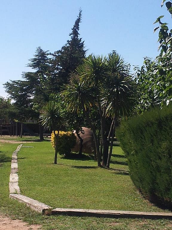 Imagen del inmueble - Apartamento en venta en calle Caravaning Internacional Costa Brava, Tordera - 226135146