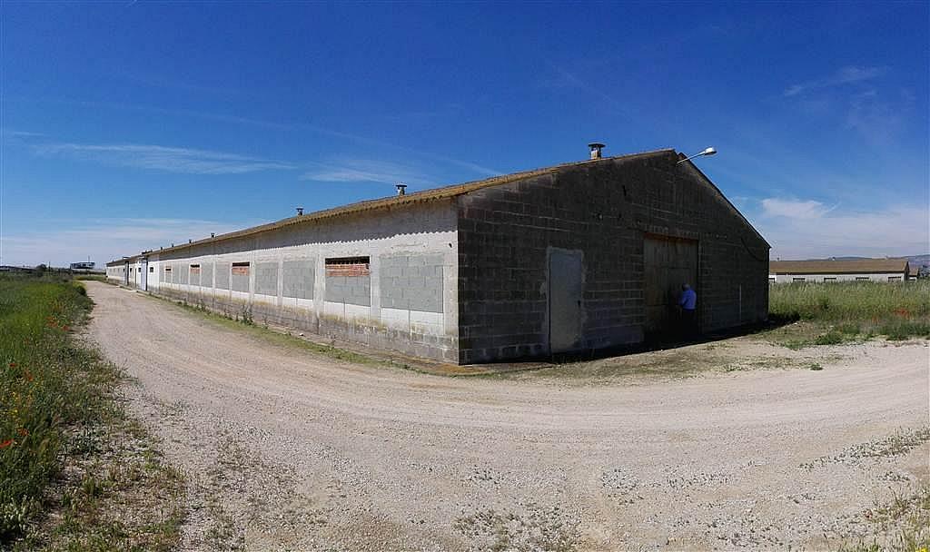 Imagen del inmueble - Nave industrial en alquiler en calle De Puigpelat, Valls - 272761408