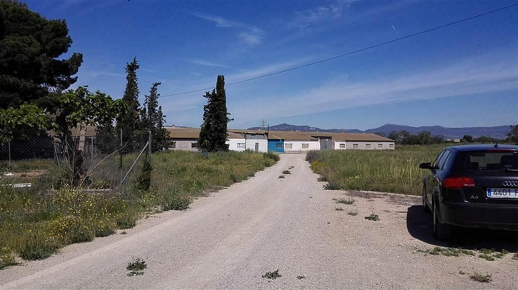 Imagen del inmueble - Nave industrial en alquiler en calle De Puigpelat, Valls - 272761411