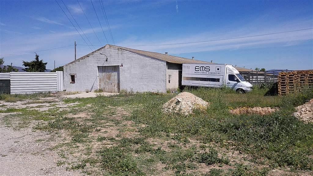 Imagen del inmueble - Nave industrial en alquiler en calle De Puigpelat, Valls - 272761417