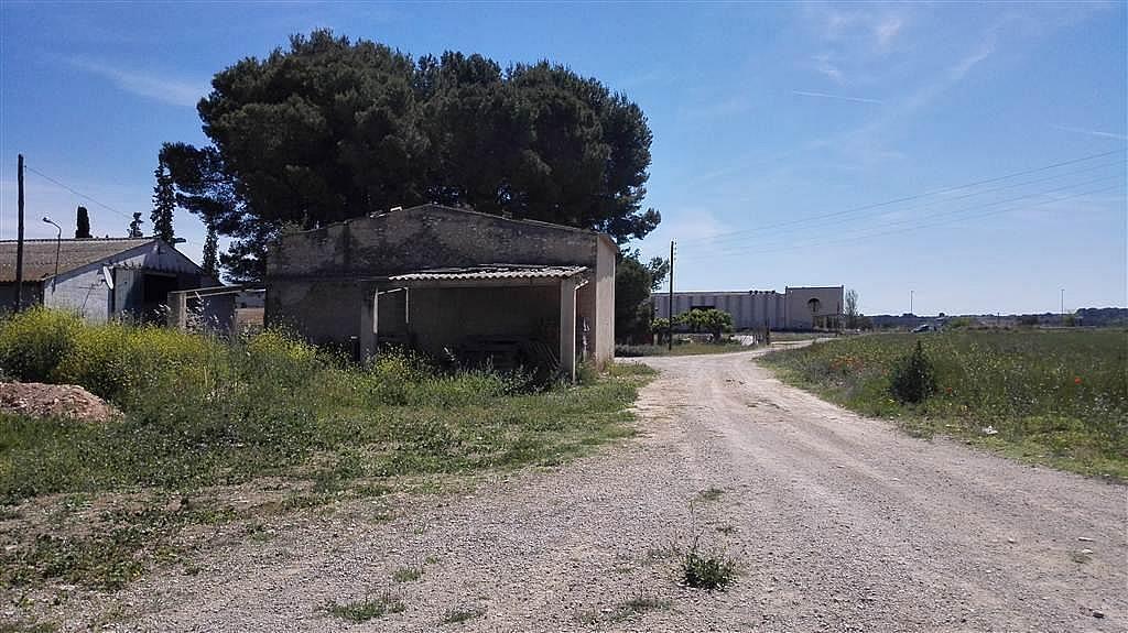 Imagen del inmueble - Nave industrial en alquiler en calle De Puigpelat, Valls - 272761423