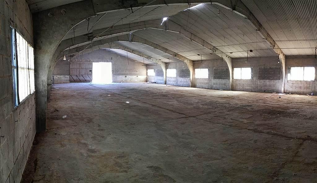 Imagen del inmueble - Nave industrial en alquiler en calle De Puigpelat, Valls - 272761429
