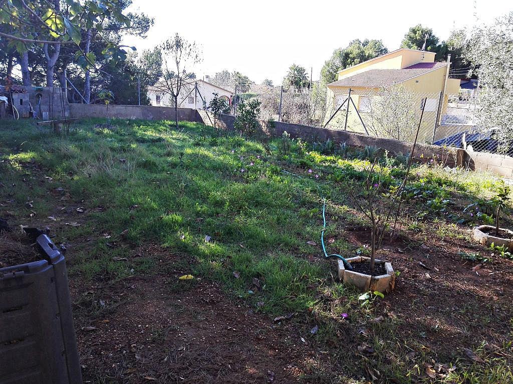 Imagen del inmueble - Casa en alquiler en calle Principal, Cabra del Camp - 314658385