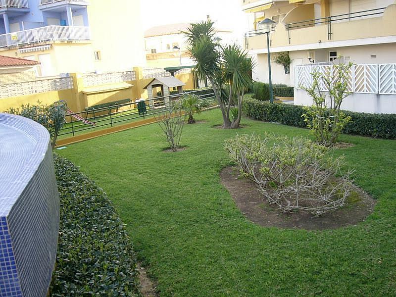 Piso en alquiler opción compra en calle Camp de Morvedre, Playa de Gandia en Gandia - 124578251