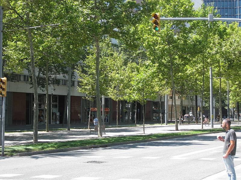 Foto - Local comercial en alquiler en El Poblenou en Barcelona - 327275114
