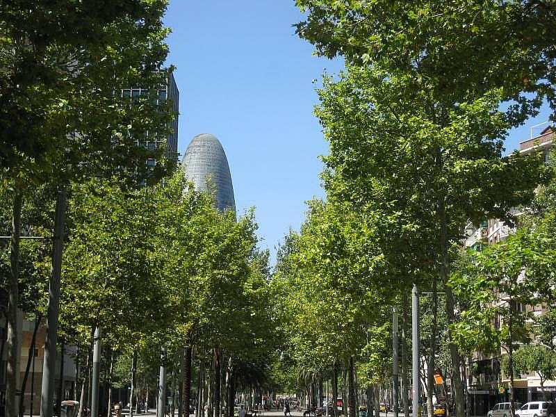 Foto - Local comercial en alquiler en El Poblenou en Barcelona - 327275120
