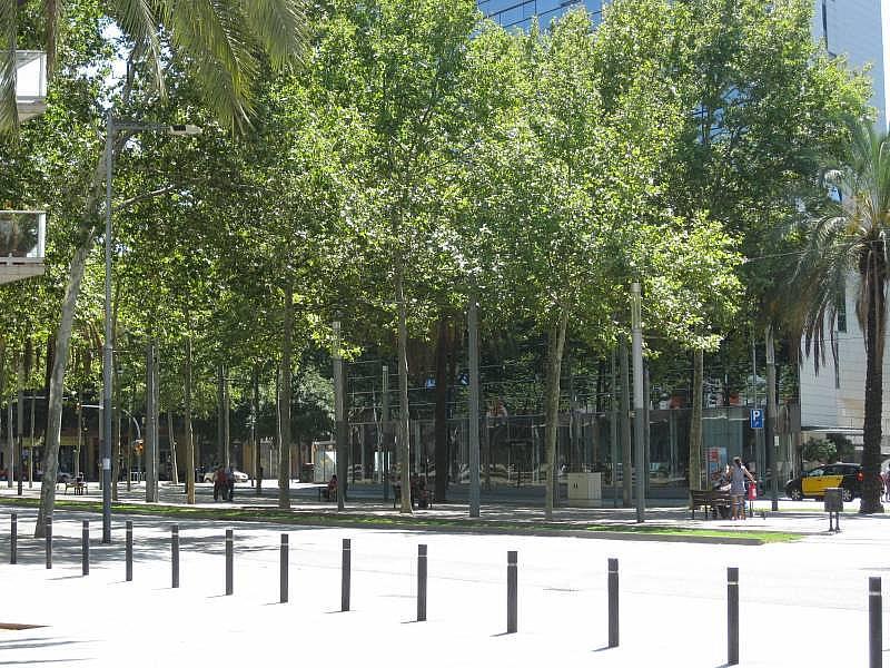 Foto - Local comercial en alquiler en El Poblenou en Barcelona - 327275129