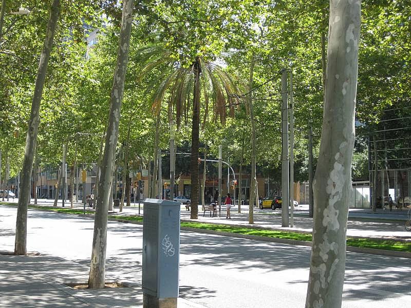 Foto - Local comercial en alquiler en El Poblenou en Barcelona - 327275132