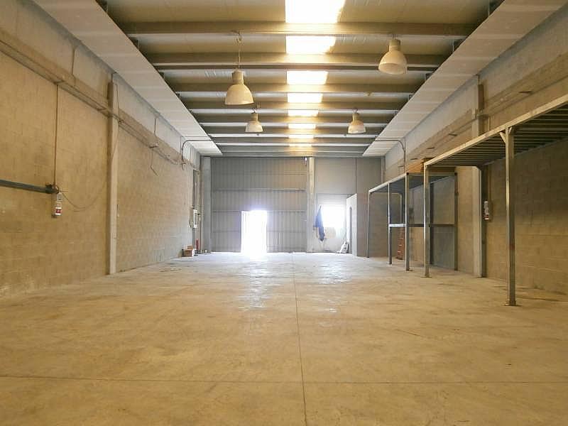 Foto - Nave industrial en alquiler en Sant Esteve Sesrovires - 323696662