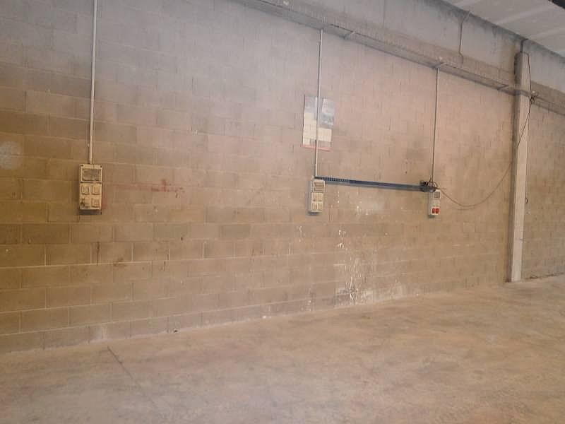 Foto - Nave industrial en alquiler en Sant Esteve Sesrovires - 323696665