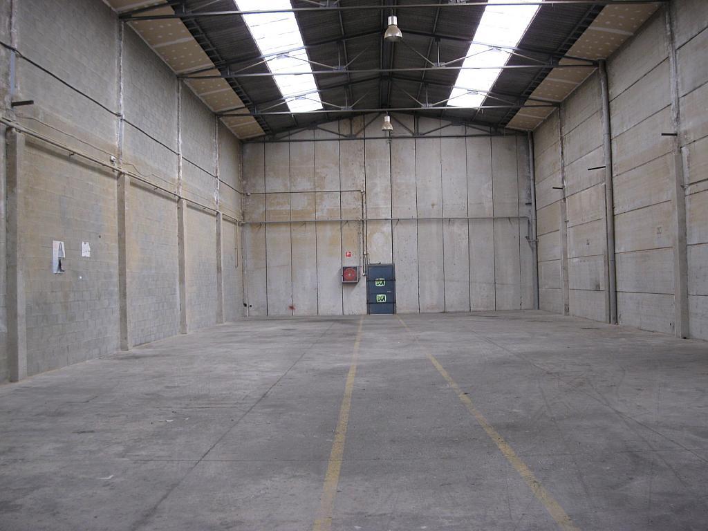 Nave industrial en alquiler en calle Pregreso, Les Mossotes en Gavà - 245403615