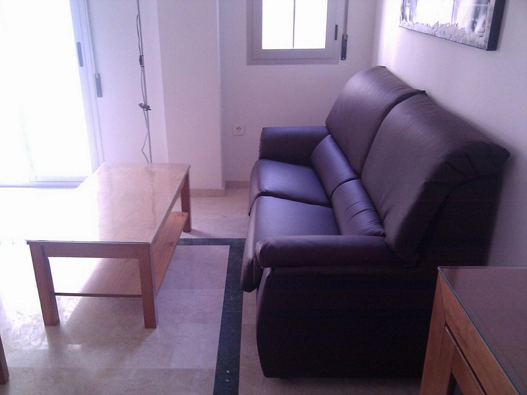Piso en alquiler en calle Pintor Velazquez, Centro en Granada - 356630302